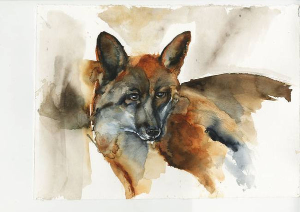 Fox Waiting - Limited Edition Print