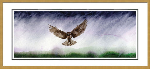 Great Northern Harrier Landing - Framed Original Painting