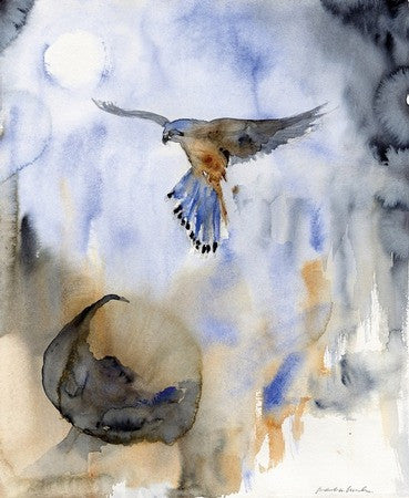 Kestrel in Blue – Limited Edition Print