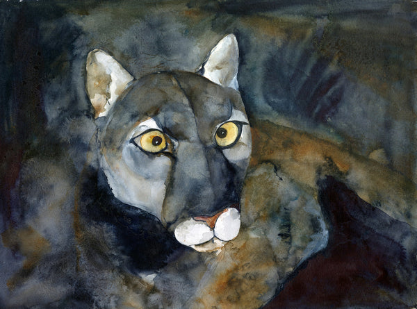 Night Cougar Limited Edition Print