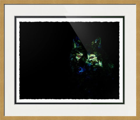 Night Wolf - Framed