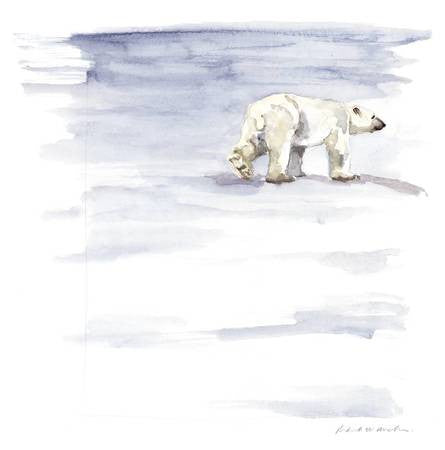 Polar Bear Stroll - Limited Edition Print