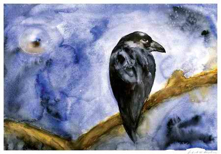 Raven Evening - Limited Edition Print