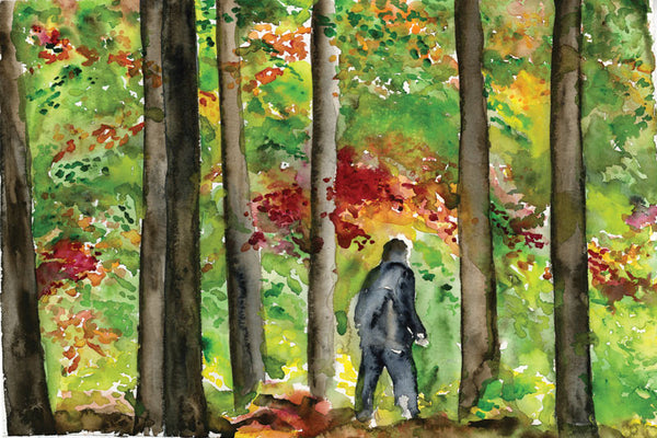 Wild Woods Wanderer – Limited Edition Print
