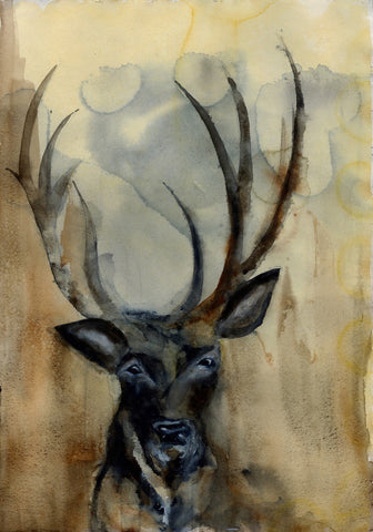 Deer Looking - Signed, Limited Edition Print