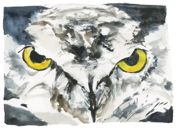 Owl Eyes Watercolor Sketch