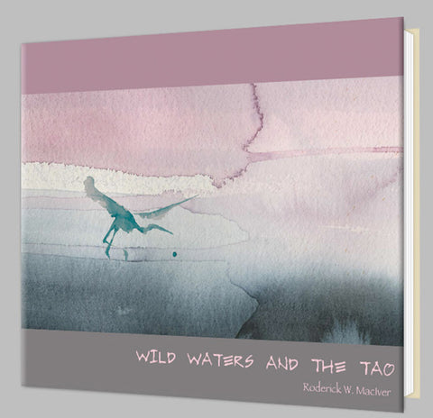 Wild Waters and the Tao