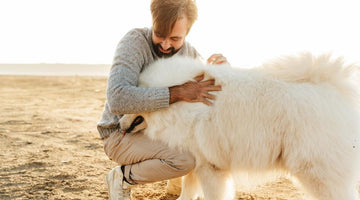 5 Fun Things to Do With Your Dog This Summer