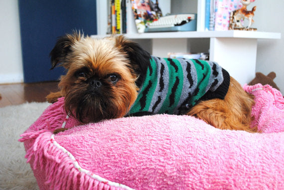 Mustache Lambswool Dog Sweater