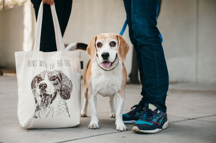 Gallery: Best in Show Tote Bags PY9011AMF