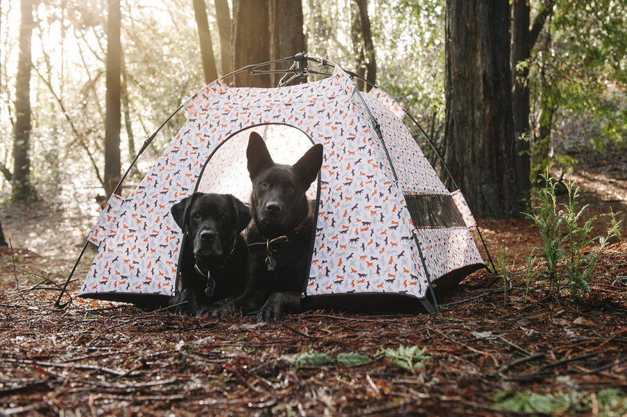 Gallery: Outdoor Dog Tent PY6006BSF