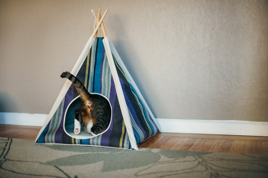 Gallery: Horizon Pet Teepee PY6011DUF