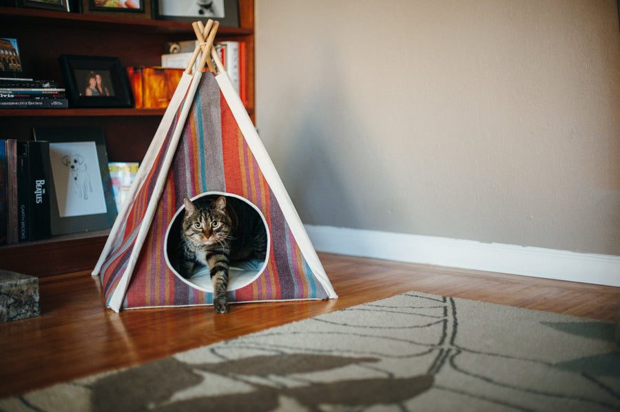Gallery: Horizon Pet Teepee PY6011AUF