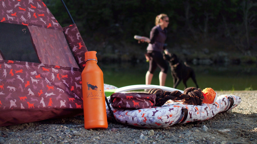 Gallery: Scout & About Water Bottle MiiR500232