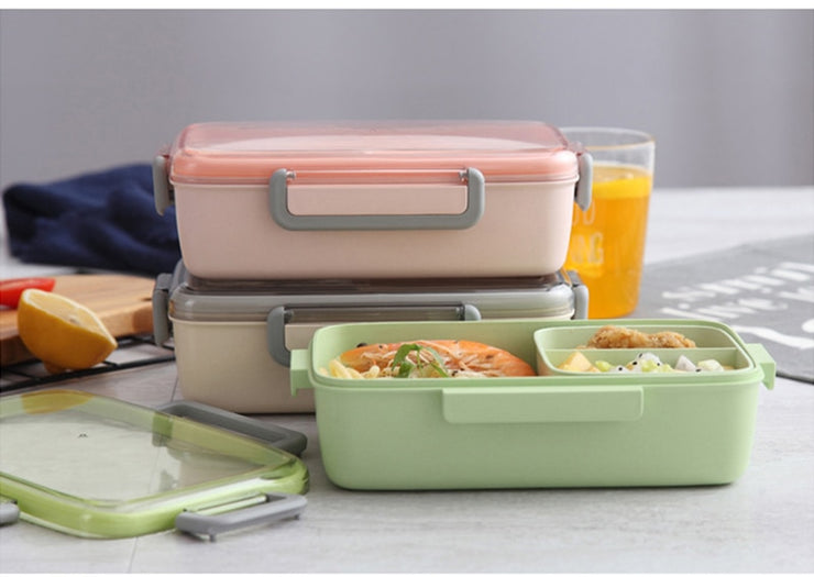 Bento Box Matte Color | Bento-cook.com