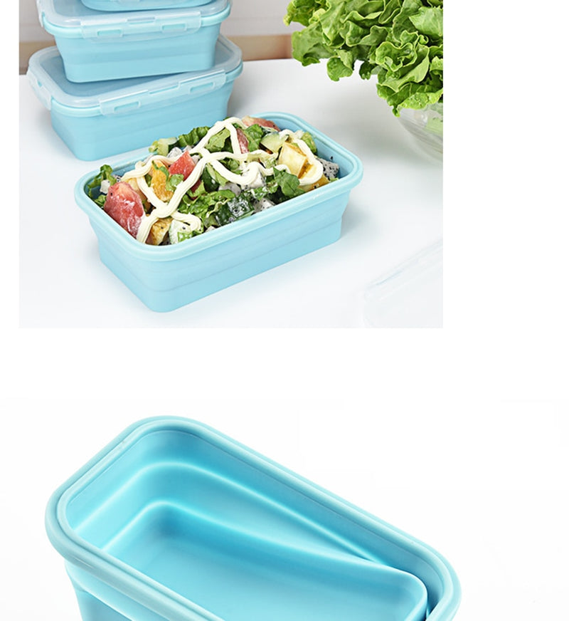 Bento Box Maxi conservation