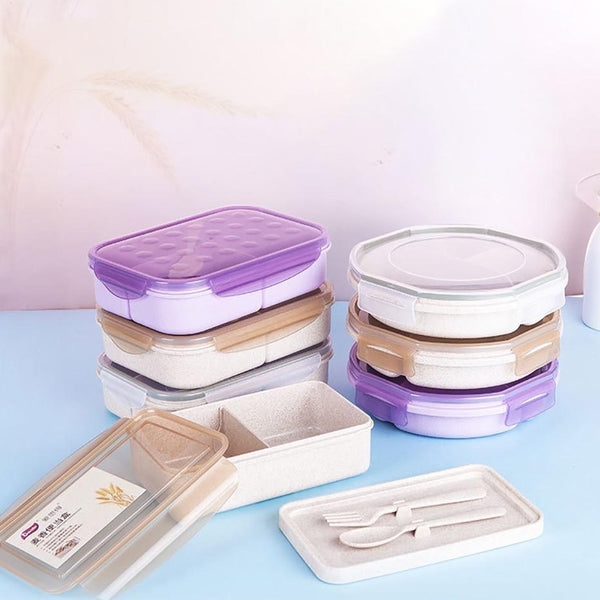 Cicular and Square Bento Boxes