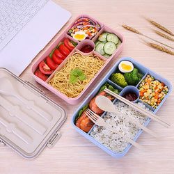 Traditionnal Plastic Bento Box
