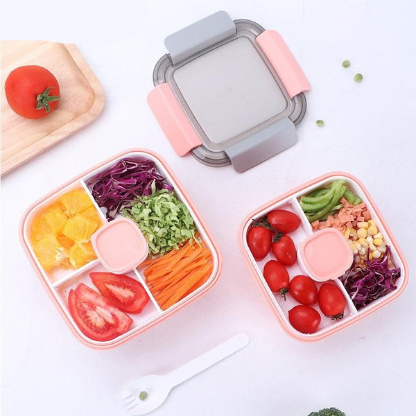 Small Japanese Bento Box for School