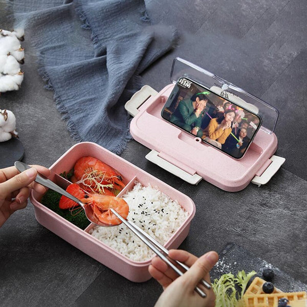 Bento colorful Picnic | Bento-cook.com