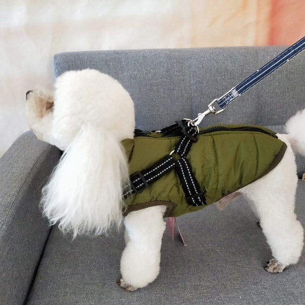 Pet Cotton Padded Vest With Durable Chest Strap Harness
