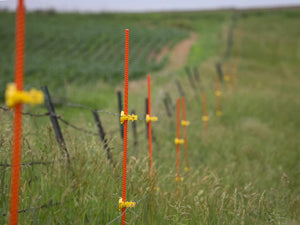 EZ Step-In posts used as electric fence