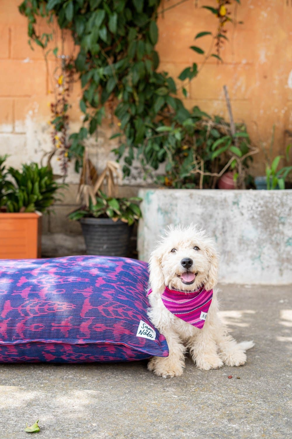 "Large Dog Beds - Garden Party (36"" x 43"")"