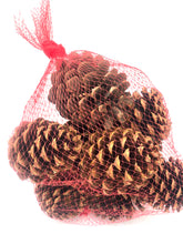 Load image into Gallery viewer, Cinnamon Scented Pinecones