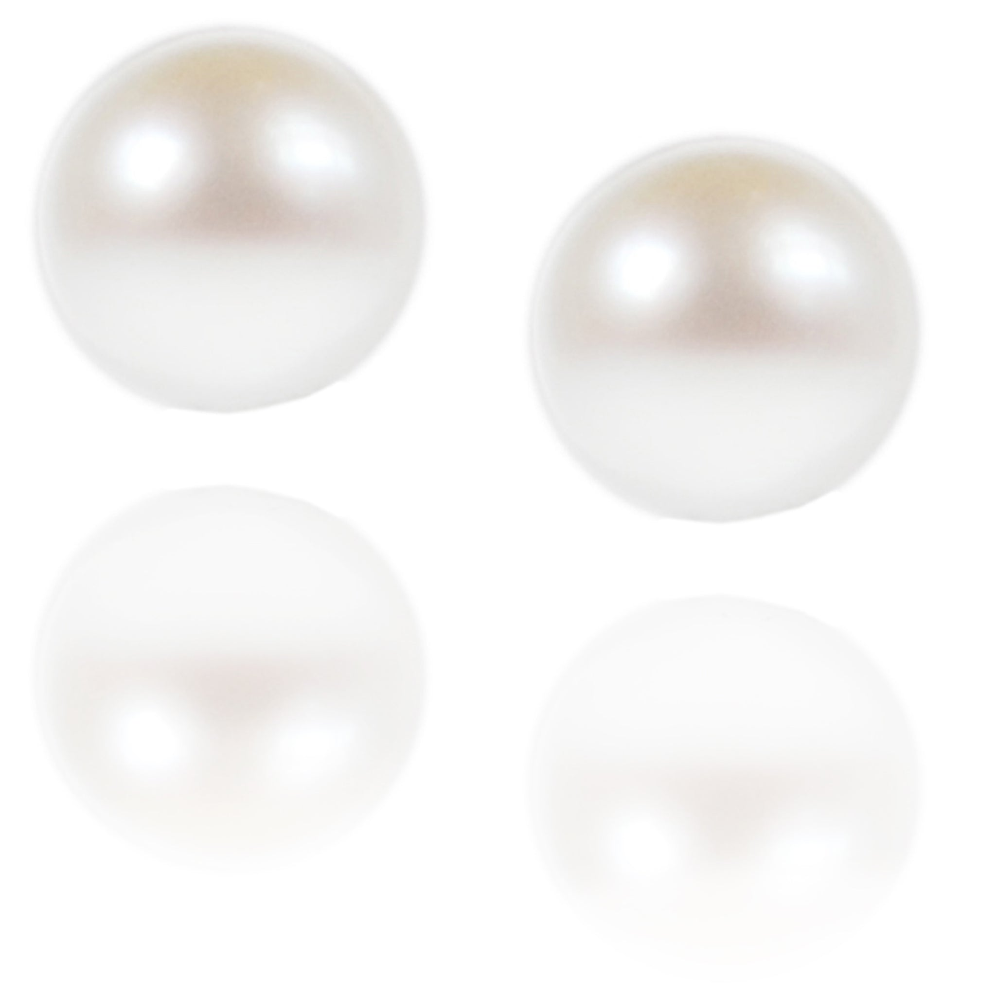 White South Sea Pearl & White Gold Large Studs