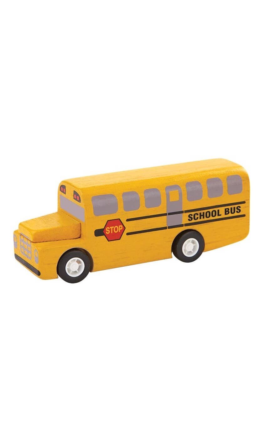 Mini School Bus