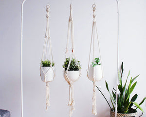Telly Hanging Planter