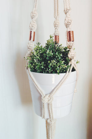 Day Hanging Planter