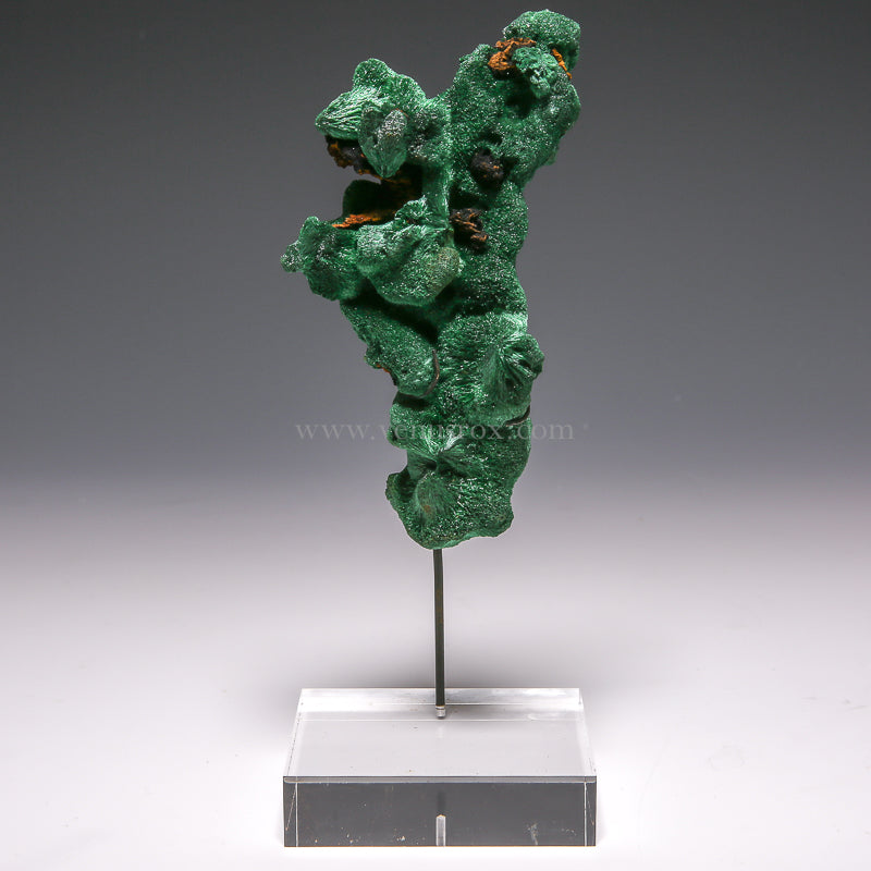 Fibrous Malachite Natural Crystal from Shaba Prov., Zaire mounted on a bespoke stand | Venusrox