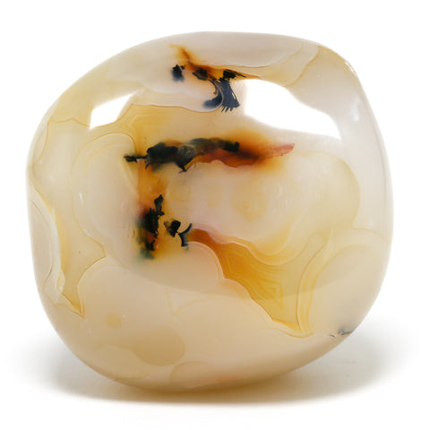 Agate (Dendritic) Polished Stone