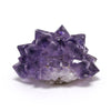 Amethyst 'Flower' from Artigas, Uruguay | Venusrox