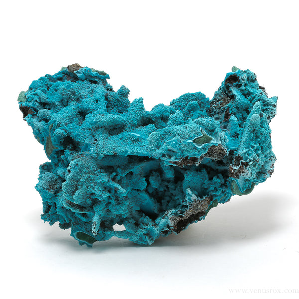 A Chrysocolla Pseudomorph after Malachite and Azurite from Lupoto Mine, Lubumbashi, Democratic Republic of the Congo | Venusrox
