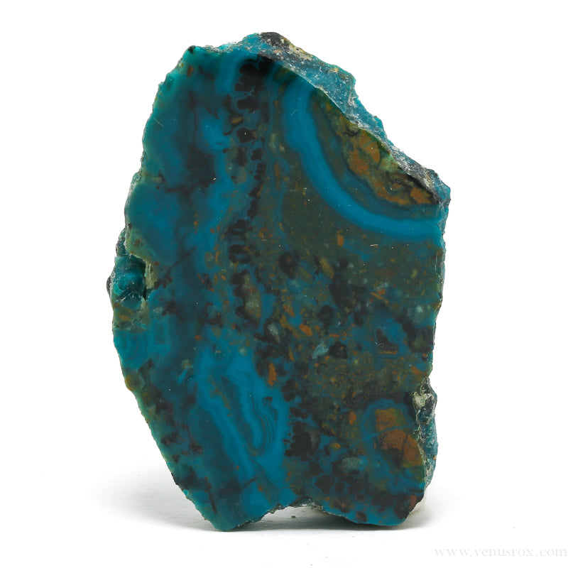 Chrysocolla Polished Slice from USA | Venusrox