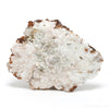 Spessartine Garnet with Orthoclase Natural Cluster from China | Venusrox