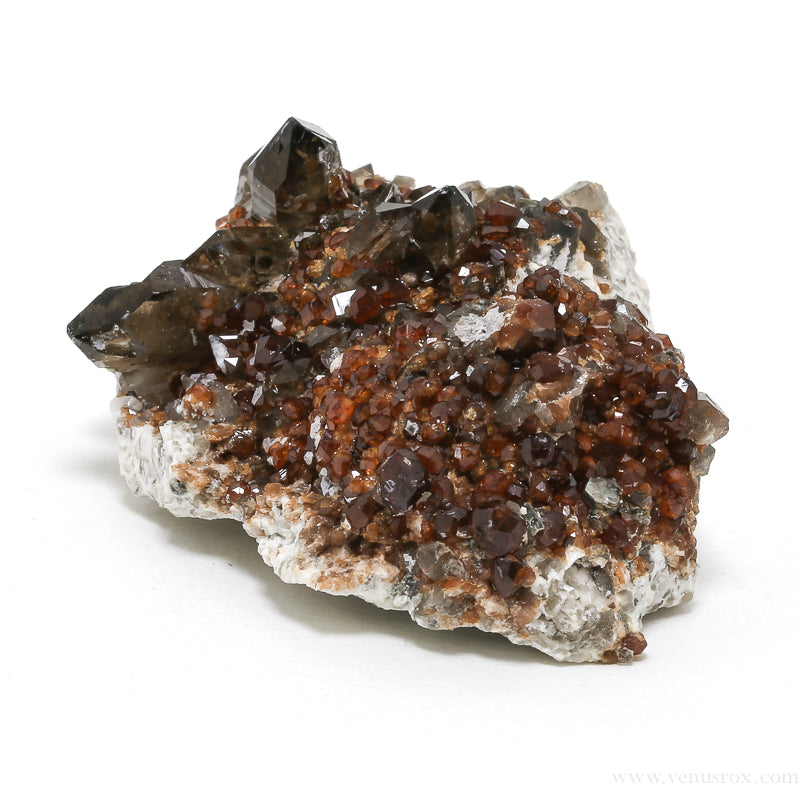 Spessartine Garnet with Smoky Quartz and Orthoclase Natural Cluster from China | Venusrox