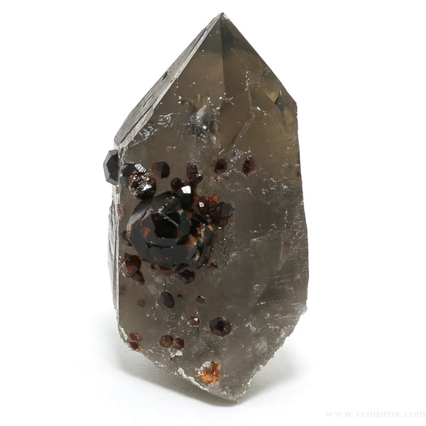 Spessartine Garnet with Smoky Quartz and Orthoclase Natural Point from China | Venusrox