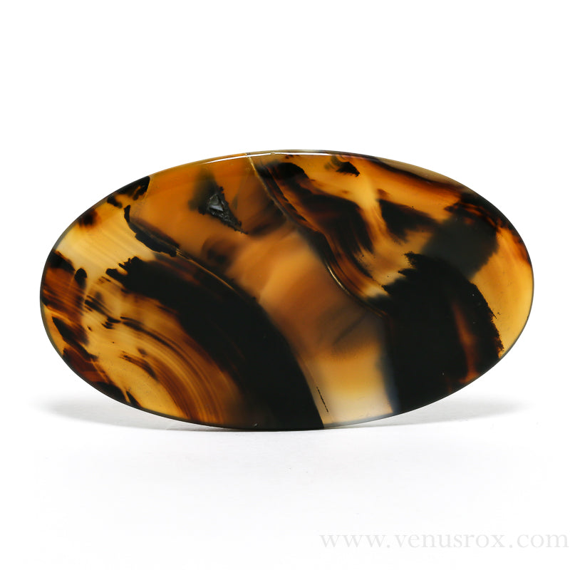 Montana Agate Polished Crystal from the USA | Venusrox