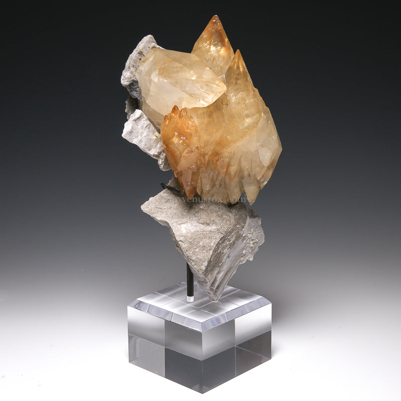 Stellar Beam Calcite on Matrix Natural Crystal from the Elmwood Mine, Tennessee, USA, mounted on a bespoke stand | Venusrox