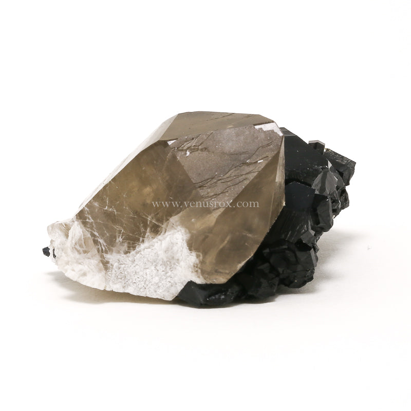 Black Tourmaline with Smoky Quartz Natural Cluster from the Erongo Mountains, Namibia | Venusrox