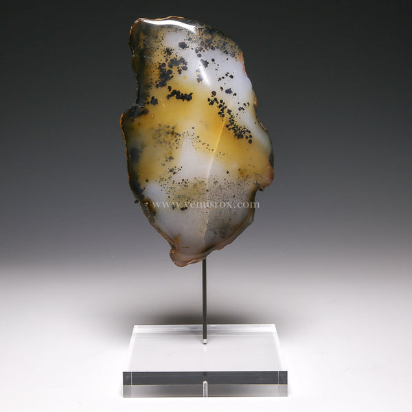 Dendritic Agate Part Polished/Part Natural Crystal from Madagascar mounted on a bespoke stand | Venusrox