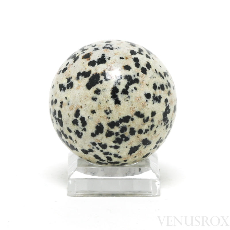 Dalmatian Jasper Polished Sphere from China | Venusrox