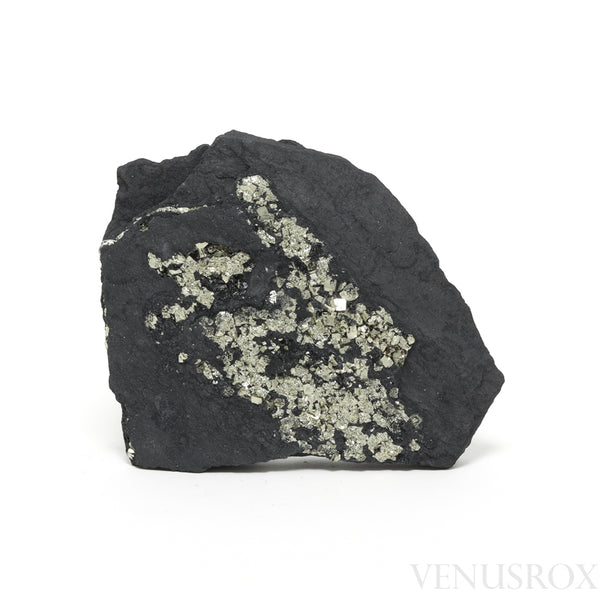 Pyrite in Shale Natural Crystal from Brazil | Venusrox