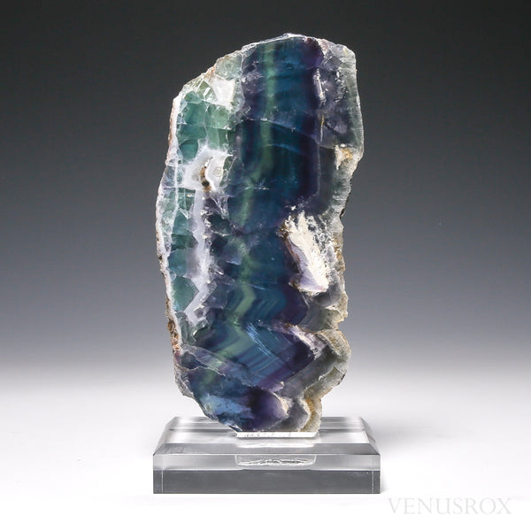 Fluorite Part Polished/Part Natural Slice from Mexico, mounted on a bespoke stand | Venusrox