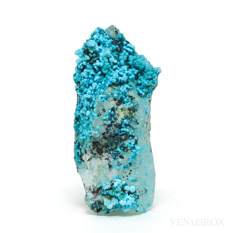 Chrysocolla on Quartz Natural Crystal Specimen from Peru | Venusrox