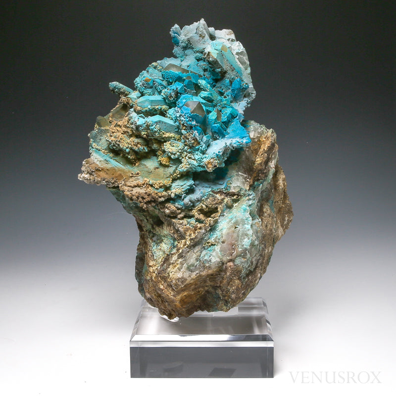 Chrysocolla on Quartz & Matrix Natural Cluster from Peru, mounted on a besoke stand | Venusrox
