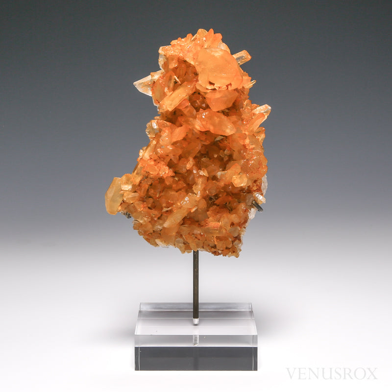 Tangerine Lemurian Quartz Natural Cluster from Brazil mounted on a Bespoke Stand | Venusrox